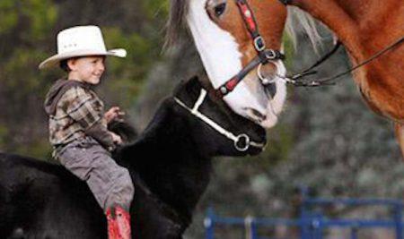Riabilitazione equestre ed equitazione integrata